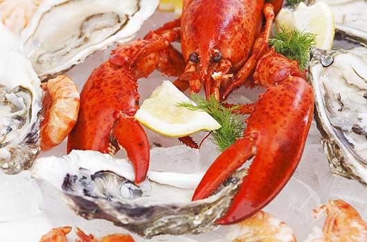 курсове за готвачи - риба и морски дарове